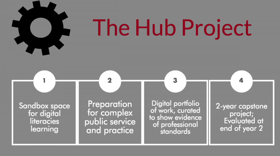The Digital Hub Project: New Data and Analyses